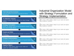 Industrial Organization Model With Strategy Formulation And Strategy Implementation
