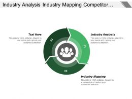 Industry Analysis Industry Mapping Competitor Profiling Sales Process