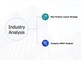 Industry Analysis Ppt Powerpoint Presentation File Portfolio