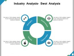 Industry Analysis Swot Analysis Ppt Powerpoint Presentation File Outline