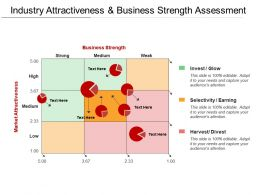 Industry Attractiveness And Business Strength Assessment1