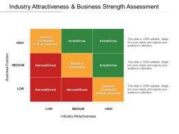Industry Attractiveness And Business Strength Assessment