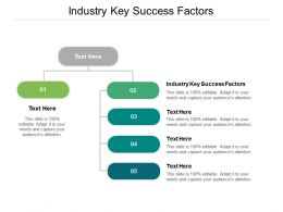 Industry Key Success Factors Ppt Powerpoint Presentation Layouts Structure Cpb