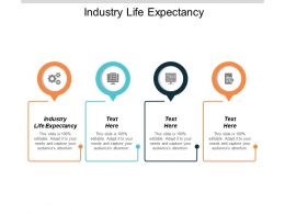 Industry Life Expectancy Ppt Powerpoint Presentation Inspiration Model Cpb