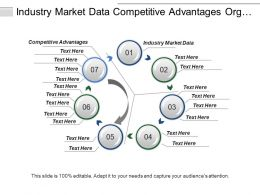 Industry Market Data Competitive Advantages Org Wide Strategies