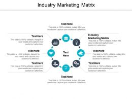 Industry Marketing Matrix Ppt Powerpoint Presentation File Design Templates Cpb