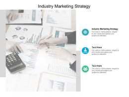 Industry Marketing Strategy Ppt Powerpoint Presentation Layouts Images Cpb