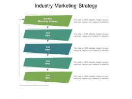 Industry Marketing Strategy Ppt Powerpoint Presentation Portfolio Background Images Cpb