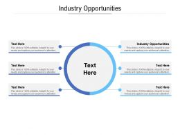 Industry Opportunities Ppt Powerpoint Presentation File Show Cpb