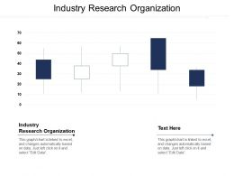 Industry Research Organization Ppt Powerpoint Presentation File Display Cpb