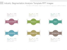 Industry Segmentation Analysis Template Ppt Images