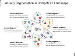 Industry Segmentation In Competitive Landscape Powerpoint Slides