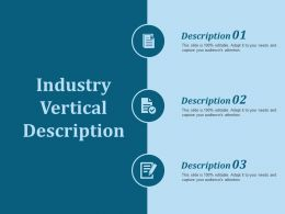 Industry Vertical Description Ppt Slides Outline