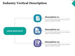 Industry Vertical Description Strategy Ppt Inspiration Design Inspiration