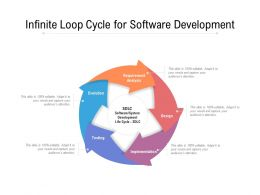 Infinite Loop Cycle For Software Development