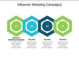 Influencer Marketing Campaigns Ppt Powerpoint Presentation Portfolio Picture Cpb