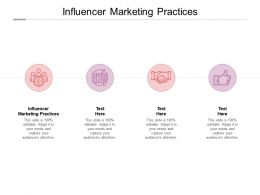 Influencer Marketing Practices Ppt Powerpoint Presentation Infographics Maker Cpb