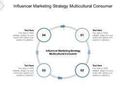 Influencer Marketing Strategy Multicultural Consumer Ppt Powerpoint Presentation Cpb