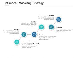 Influencer Marketing Strategy Ppt Powerpoint Presentation Gallery Graphics Cpb
