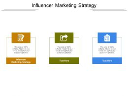 Influencer Marketing Strategy Ppt Powerpoint Presentation Professional Structure Cpb