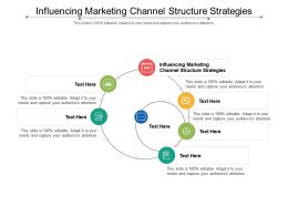 Influencing Marketing Channel Structure Strategies Ppt Powerpoint Presentation Portfolio Guide Cpb