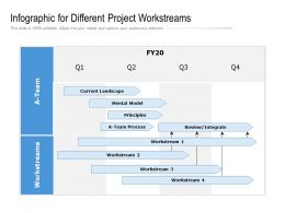 Infographic For Different Project Workstreams