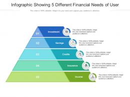 Infographic Showing 5 Different Financial Needs Of User