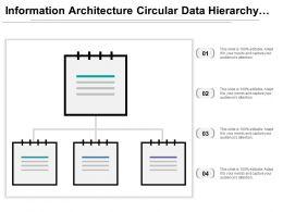Information Architecture Circular Data Hierarchy Icon