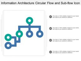 Information Architecture Circular Flow And Sub Flow Icon