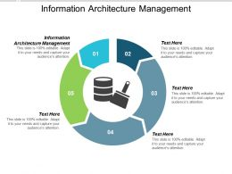 Information Architecture Management Ppt Powerpoint Presentation Summary Graphics Cpb