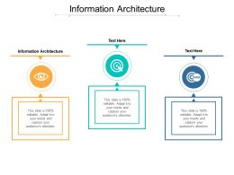 Information Architecture Ppt Powerpoint Presentation Ideas Show Cpb