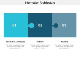 Information Architecture Ppt Powerpoint Presentation Inspiration Example Cpb