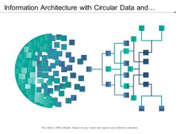 Information Architecture With Circular Data And Horizontal Flow