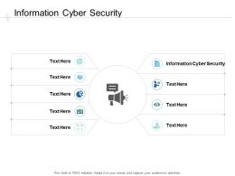 Information Cyber Security Ppt Powerpoint Presentation Layouts Smartart Cpb