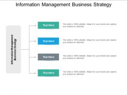 Information Management Business Strategy Ppt Powerpoint Presentation Infographics Cpb