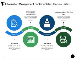 Information Management Implementation Service Data Auditing Data Integration