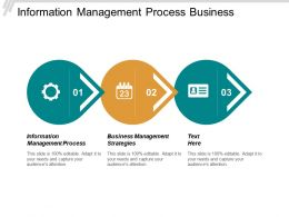Information Management Process Business Management Strategies Sdlc Methodology Cpb