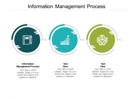 Information Management Process Ppt Powerpoint Presentation Diagrams Cpb