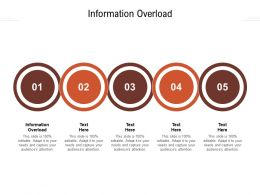 Information Overload Ppt Powerpoint Presentation Professional Background Cpb