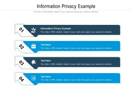 Information Privacy Example Ppt Powerpoint Presentation Inspiration Picture Cpb