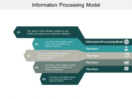 Information Processing Model Ppt Powerpoint Presentation Portfolio Inspiration Cpb