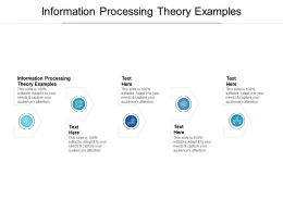 Information Processing Theory Examples Ppt Powerpoint Presentation Layouts Show Cpb