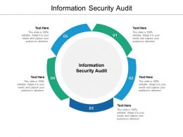 Information Security Audit Ppt Powerpoint Presentation Slides Slideshow Cpb