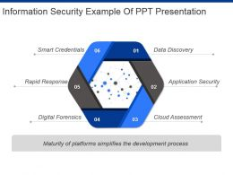 Information Security Example Of Ppt Presentation