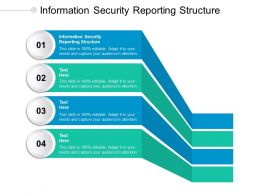 Information Security Reporting Structure Ppt Powerpoint Presentation Styles Ideas Cpb