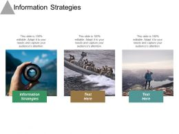 Information Strategies Ppt Powerpoint Presentation File Graphics Cpb