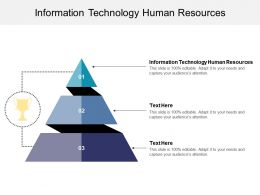 Information Technology Human Resources Ppt Powerpoint Presentation Icon Cpb