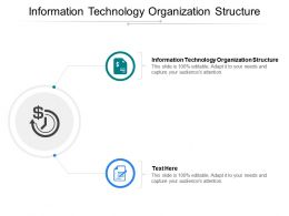 Information Technology Organization Structure Ppt Powerpoint Presentation Ideas Example Cpb