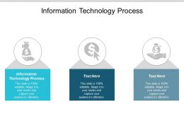 Information Technology Process Ppt Powerpoint Presentation Summary Templates Cpb