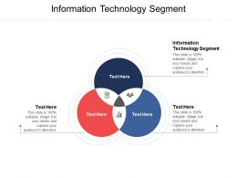 Information Technology Segment Ppt Powerpoint Presentation File Example Topics Cpb